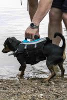 Alcott Adventures Mariner Life Jacket. Schwimmweste für Hunde
