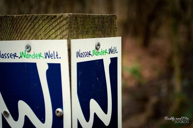 Galgenvenn, Premiumwanderweg, NRW, Niederrhein, Wasser Wander Welt, Wandern mit Hund, Moor, Heide, Wald, Deutschland, Niederlande, Winter
