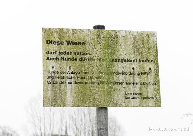 Hundeblog, Hund, Hundewiese, Essen, NRW, Ruhrgebiet, Freilaufflächen, ohne Leine, Gassi, Spaziergang