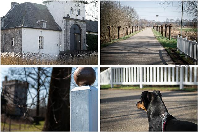 BUDDY&ME, Hundeblog, Wandern mit Hund, Wasser Wander Welt, Premiumwanderweg, Rode Beek, Winter, Frühling, Niederlande, Niederrhein, Nikon D3200, Fotografie