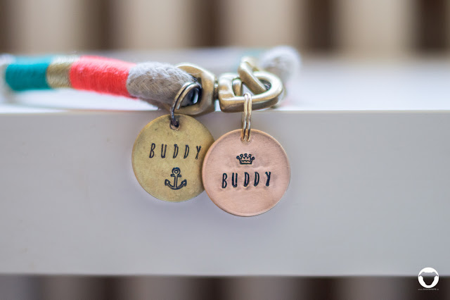 Buddy and Me, Pinscher Buddy, Hundeblog, Dogblog, Produktvorstellung, Produkttest, Kooperation, Hund, Hundemarke, Anhänger, Halsband, Gravur, Bronze, Messing