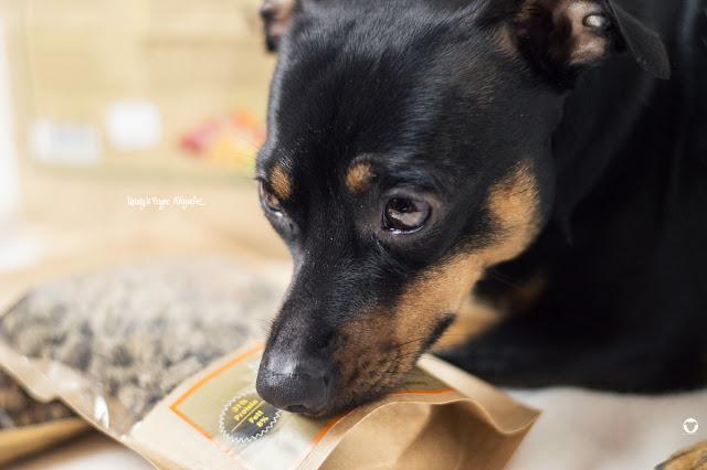 Pinscher Buddy, Buddy and Me, Hundeblog, Dogblog, Zwergpinscher, Leben mit Hund, Hundefotografie, Test, Testbericht, Produkttest, Erfahrungen, Tipp, Hundefutter, Trockenfutter, Hopey's natürliches Hundefutter, Ente, Rind, Wildschwein, Minis