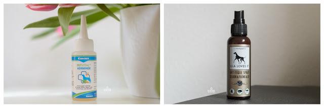 Pinscher Buddy, Buddy and Me, Hundeblog, Dogblog, Zwergpinscher, Leben mit Hund, Hundefotografie, Essen, Ruhrgebiet, Winter, März, Frühling mit Hund, Gassi, Outdoor, natürliche Zeckenabwehr, Homöopathie, CD Vet Zeckex Spray, Lila Loves It Anti-Tique Spray, Canina Verminex Spot on, Gesundheit, Zeckenzeit