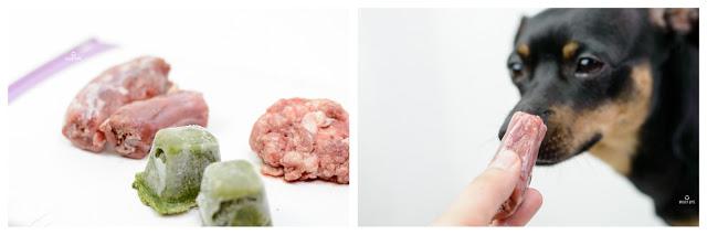 Pinscher Buddy, Buddy and Me, Hundeblog, Dogblog, Zwergpinscher, Leben mit Hund, Hundefotografie, Essen, Ruhrgebiet, Barf, Rohfütterung, Obst, Gemüse, Fleisch, Frostfleisch, Zusammenstellung, Rezepte, gesund, ausgewogen, abwechslungsreich