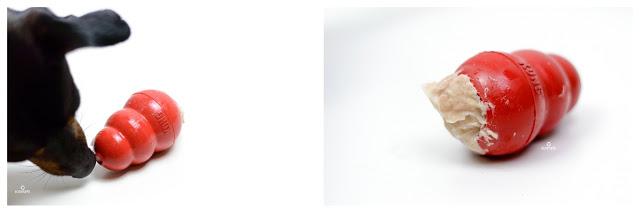 Pinscher Buddy, Buddy and Me, Hundeblog, Dogblog, Zwergpinscher, Leben mit Hund, Hundefotografie, Essen, Ruhrgebiet, Barf, Rohfütterung, Obst, Gemüse, Fleisch, Frostfleisch, Zusammenstellung, Rezepte, gesund, ausgewogen, abwechslungsreich, DIY, Hunndeeis, Kongfüllung, Kong, Eis, Sommer, Abkühlung, selbstgemacht, Thunfisch, Joghurt, Schafsjoghurt, Banane