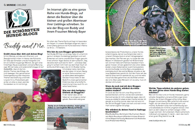 Buddy and Me, Hundeblog, Dogblog, Dogs Today, Die schönsten Hunde-Blogs, Juli/August, Presse, Medien, Kooperationen