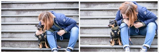 Pinscher Buddy, Buddy and Me, Hundeblog, Dogblog, Zwergpinscher, Leben mit Hund, Hundefotografie, Essen, Ruhrgebiet,Gassi, Outdoor, Herbst, Ausflug mit Hund, Ratingen, Schloss Linnep, Haus Linnep, Natur, Geschichte, historisch, Spaziergang, Gassirunde, Sofadogwear, Hachico Home, Hundepulli, Hundemantel, Winter, Kleidung für Hunde