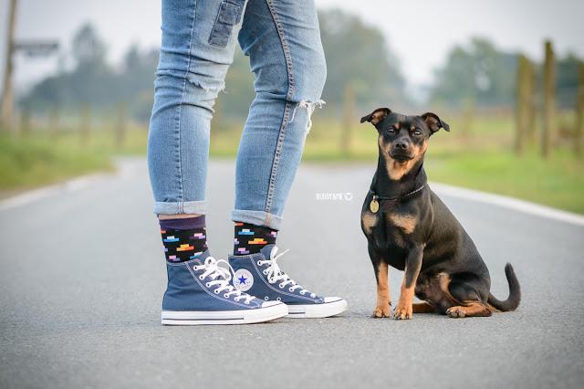 Pinscher Buddy, Buddy and Me, Hundeblog, Dogblog, Zwergpinscher, Leben mit Hund, Hundefotografie, Essen, Ruhrgebiet,Gassi, Outdoor, Test, Testbericht, Fotografie, Sigma MAKRO 105mm F2,8 EX DG OS HSM für Nikon