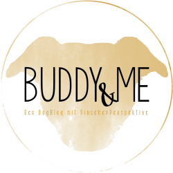 Buddy and Me