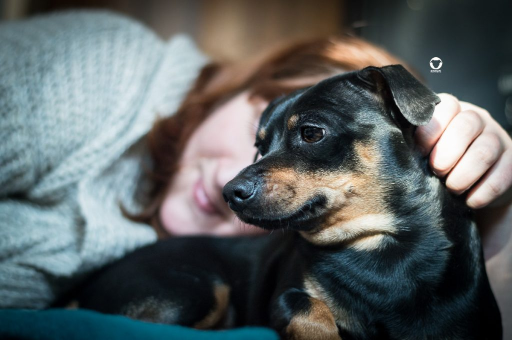 Pinscher Buddy, Buddy and Me, Hundeblog, Dogblog, Sorgen, Ängste, Gesundheit