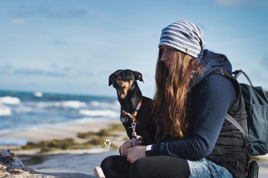 Pinscher Buddy, Buddy and Me, Hundeblog, Dogblog, Ruhrgebiet, Leben mit Hund, Hundealltag Hundeurlaub, Zingst, Darß