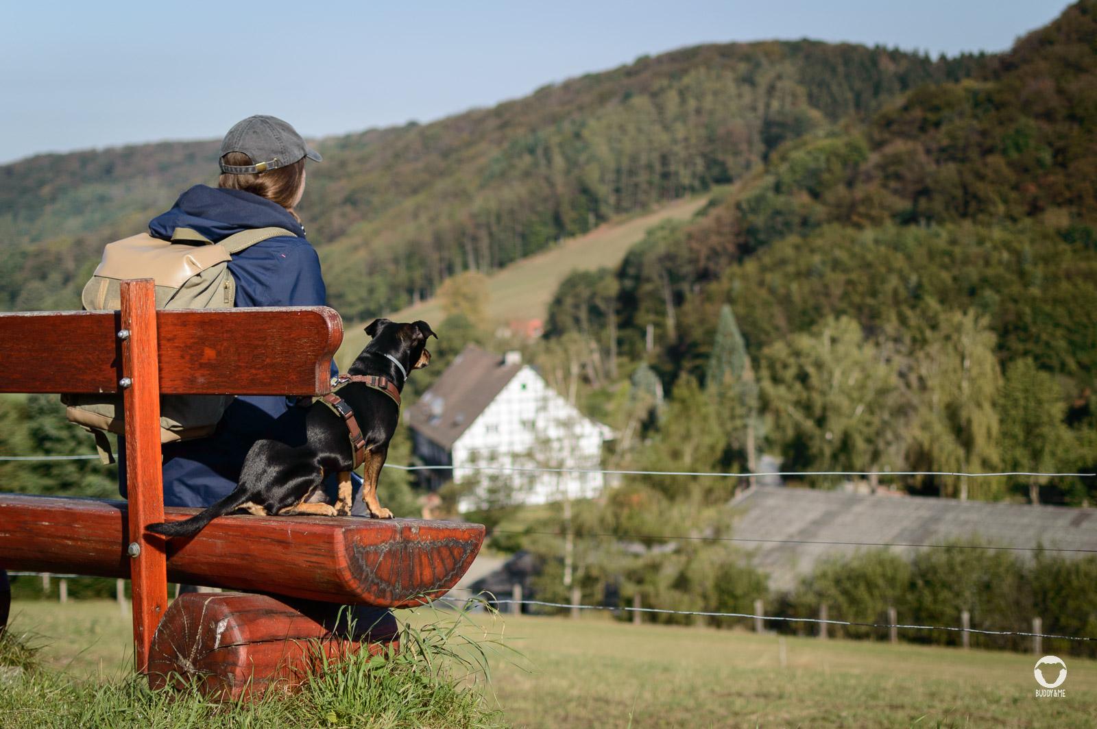 Aussicht über Hügel und Täler - Pinscher Buddy, Buddy and Me, Hundeblog, Dogblog, Ruhrgebiet, Leben mit Hund, Hundealltag, Bewegung, Glück, Team, Gemeinsam