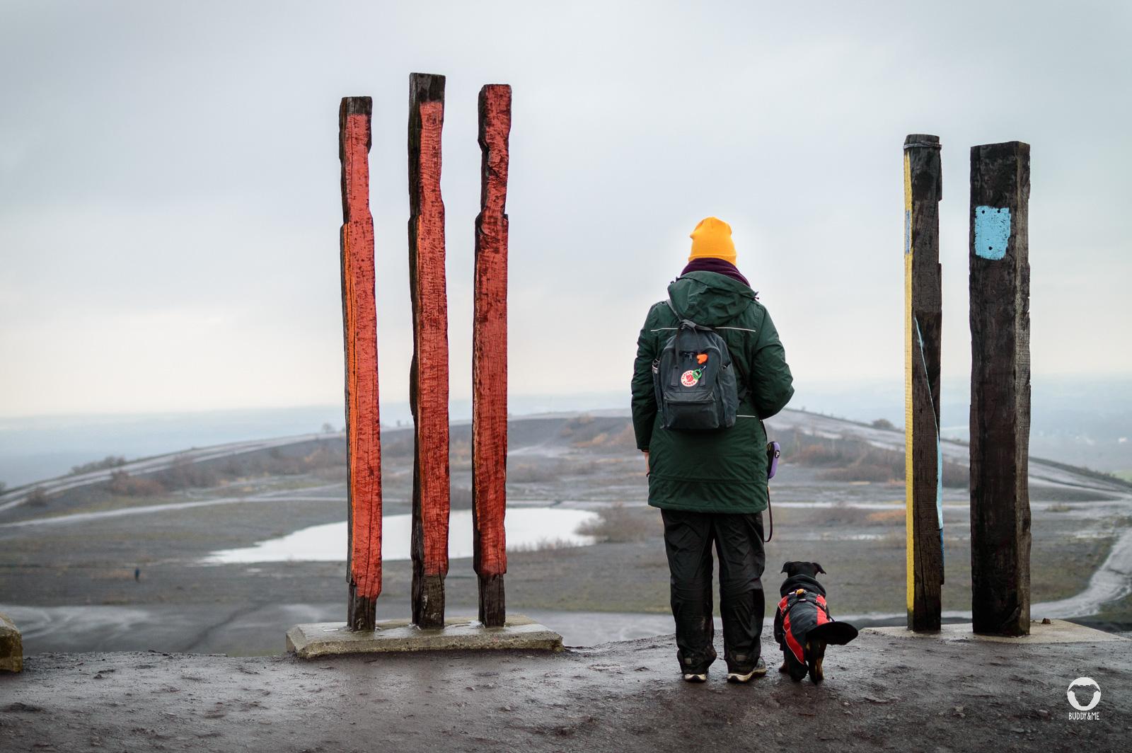 Aussicht Halde Haniel - Pinscher Buddy, Buddy and Me, Hundeblog, Dogblog, Ruhrgebiet, Leben mit Hund, Hundealltag, Bewegung, Glück, Team, Gemeinsam