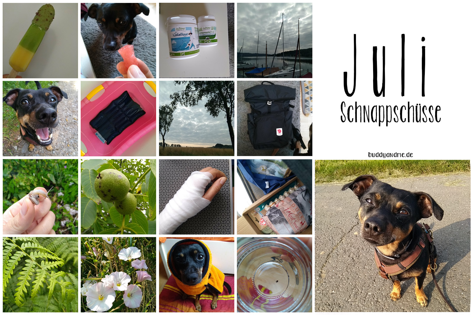 A little bit of Lately - Monatsschnappschüsse Juli 2021