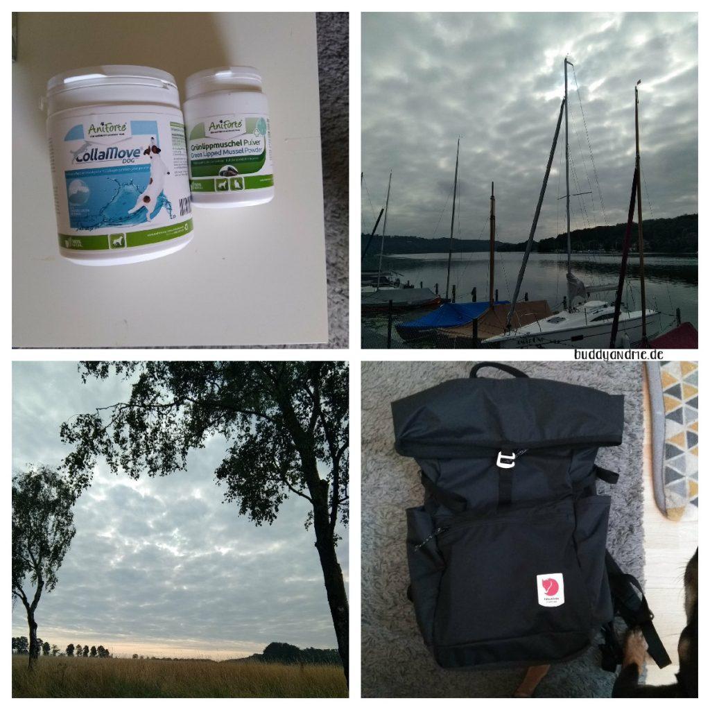 Schnappschüsse Juli - Buddys Gelenkzusätze, Segelboote auf dem Baldeneysee vor bewölktem Himmel, dichte Wolken am Morgenhimmel auf dem Auberg und mein neuer Rucksack