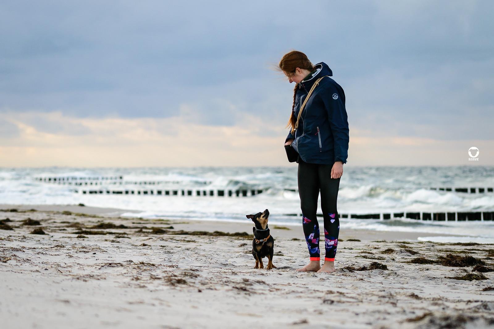 Zingst 2021 - Team Buddy & Me, Buddy und Melody gemeinsam unterwegs am Zingster Strand